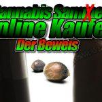 Cannabis samen Online Kaufen in Deutschland